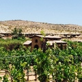OFFERS General: Sedona Wine Tour: The Terroir of the Verde Valley Wine Trail