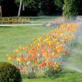 OFFERS General: Landscape/Irrigation/Sprinkler
